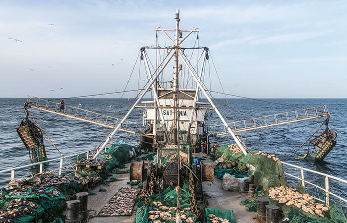 Fishing fleet off the coast of Senegal